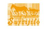 Logo Cliente Surtijilo